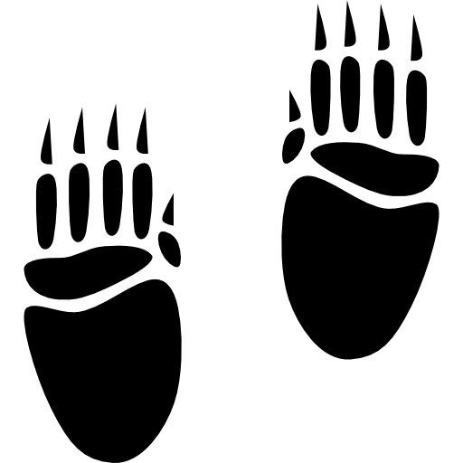 Porcupine Footprints Icons Free Download