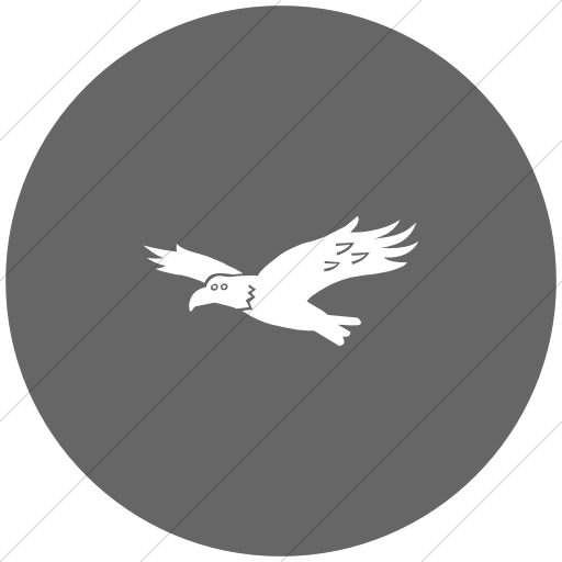 Flat Circle White On Gray Animals Hawk Icon