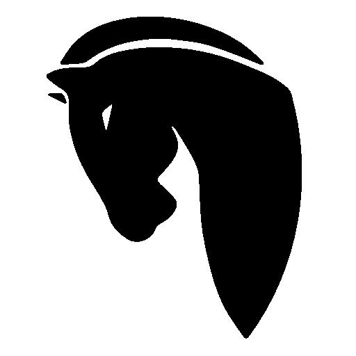 Horse Black Head Icon