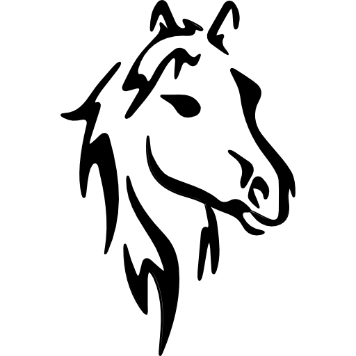 Horse Face Art Sketch