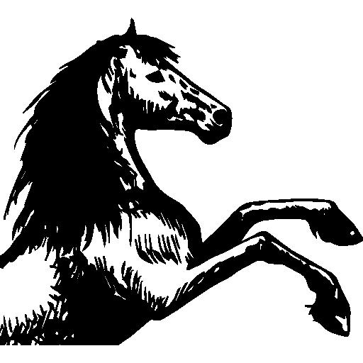 Horse Sketch, Horse Drawing, Animals, Horses, Horse Art, Horse Icon