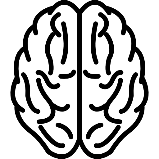 Brain Upper View Outline Icons Free Download