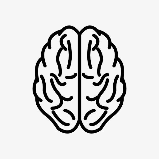 The Human Bran, Brain Cliparthuman Clipart, Icon Clipart Png
