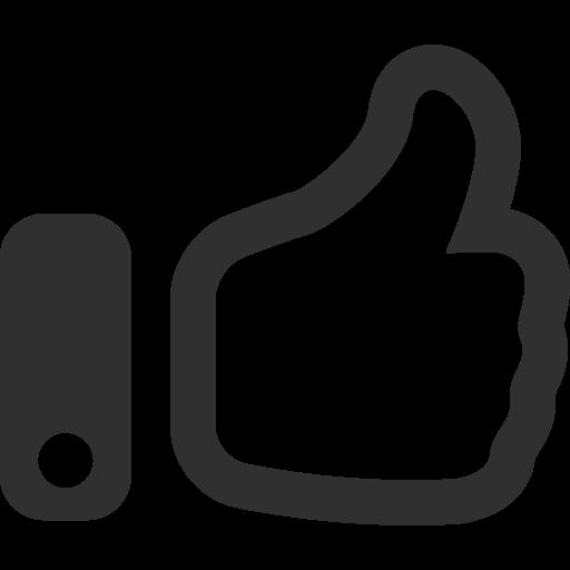 Thumbs Up Icon Mono Business Iconset Custom Icon Design