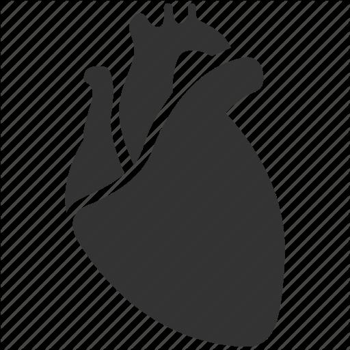 Human Heart Icon at GetDrawings com | Free Human Heart Icon