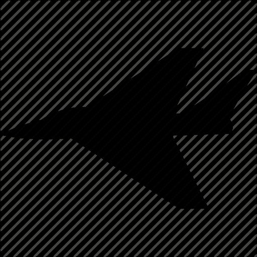 Icon 5 Plane