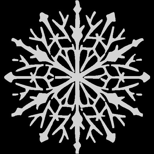 Light Gray Snowflake Icon