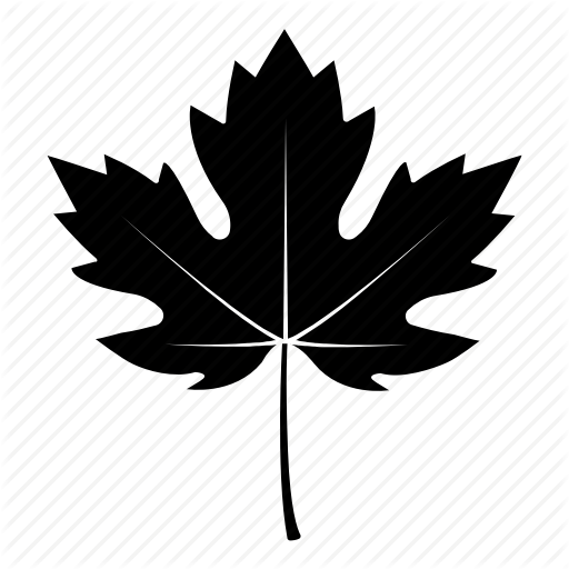 Autumn, Canada, Fall, Leaf, Maple, Sycamore, Tree Icon