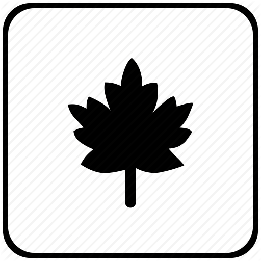 Border, Canada, Leaf, Nature, Rounded, Square Icon