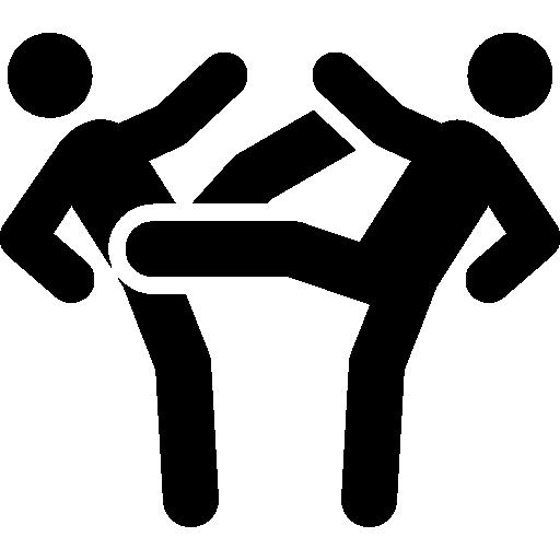Kick, Fight, Sports, Martial Arts, Fighting, Kicking Icon