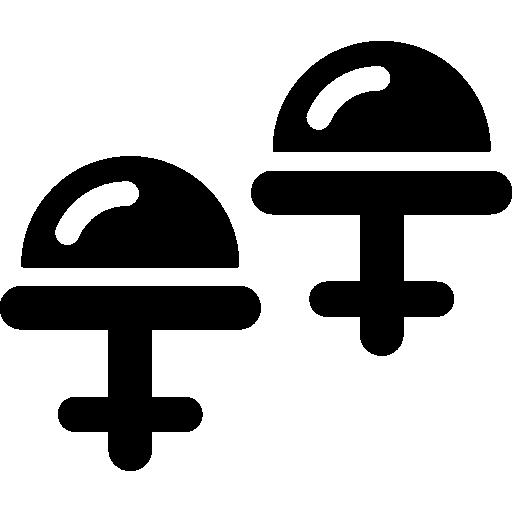 Fixtures Icon