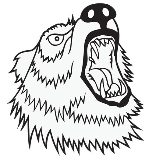 Savage Bear Screen Printing Studios