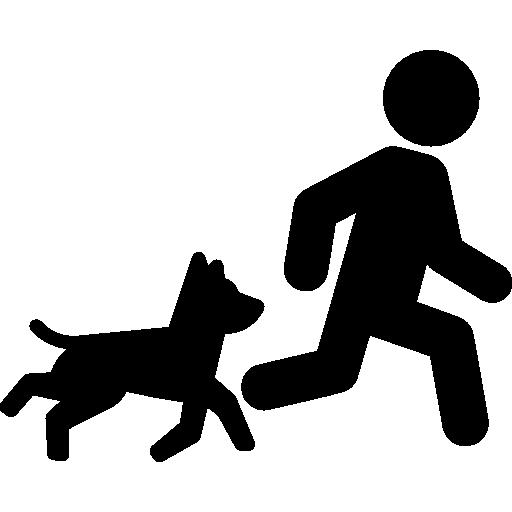 Dog And Training Icon