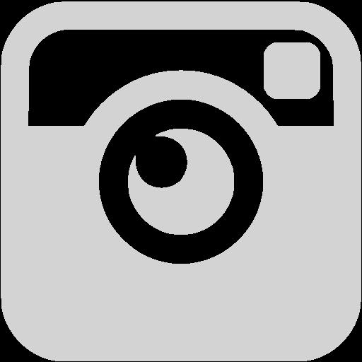 Light Gray Instagram Icon