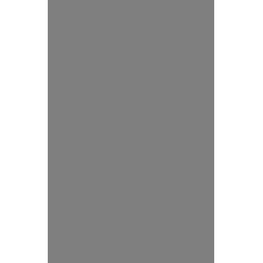 Icon Samurai Jack
