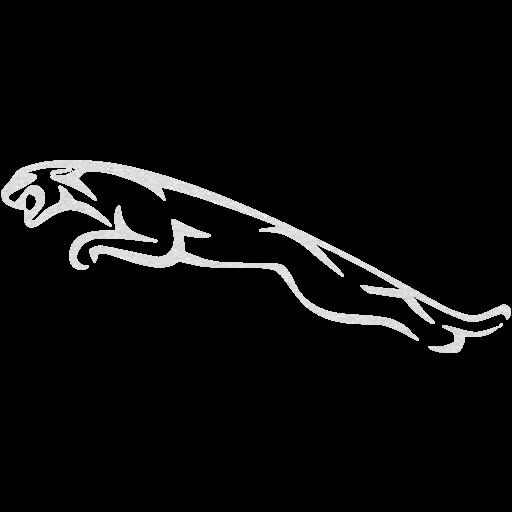 Cardboard Jaguar Icon