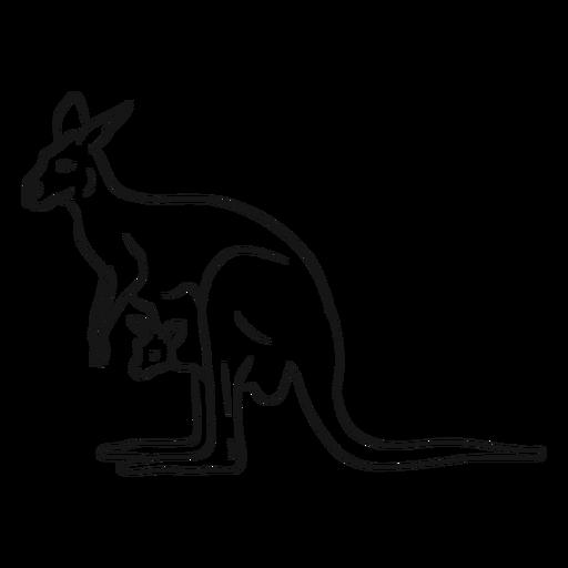 Kangaroo And Joey Sketch