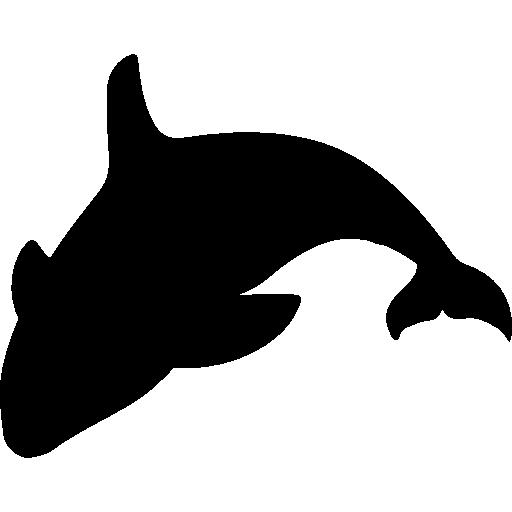 Orca, Animals, Animal Kingdom, Sea Life, Wildlife, Whale Icon