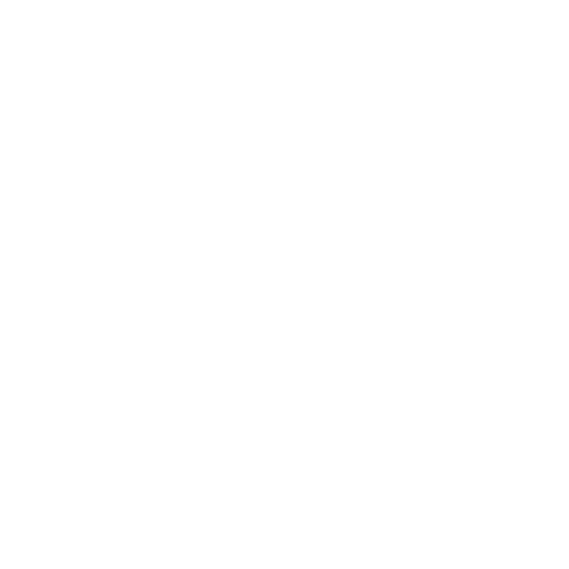 White External Link Icon