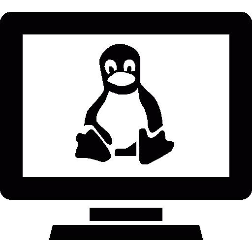 Linux Computer