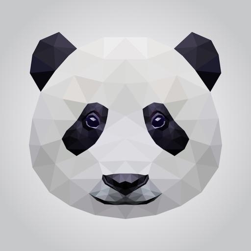 Lonely Mr Panda