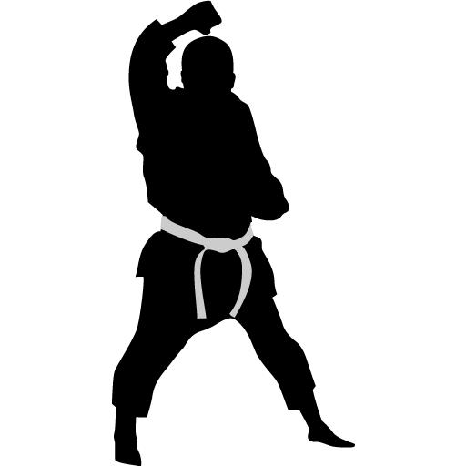 Karate Block Icon Karate Iconset Kampsport Find Hold