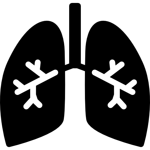 Lungs With Bronchi Icons Free Download