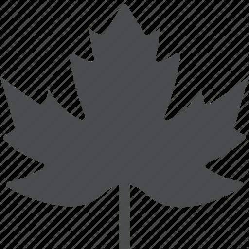 Canadian, Leaf, Maple Icon