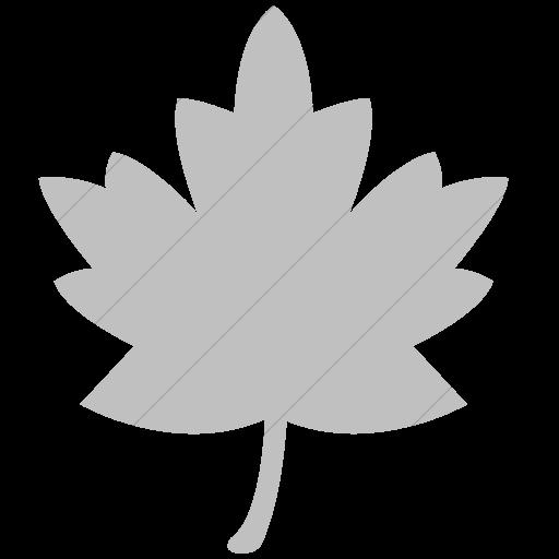 Simple Silver Classica Maple Leaf Icon