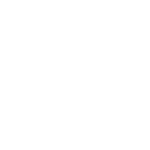 White Megaphone Icon
