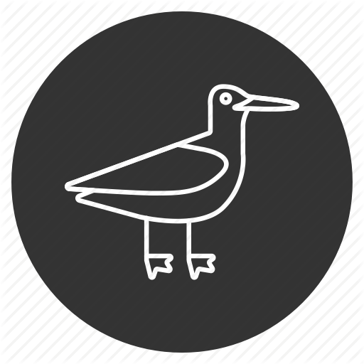 Bird, Heron, Nature, Sandpiper, Sea Gull, Sea Mew, Seagull Icon