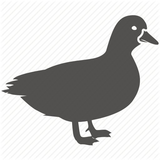 Bird, Cooking, Drake, Duck, Fowl Icon