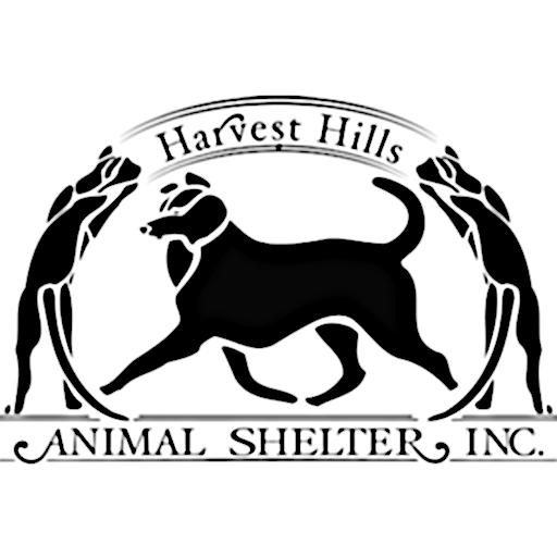 Cats Harvest Hills Animal Shelter