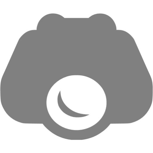 Gray Nightvision Icon