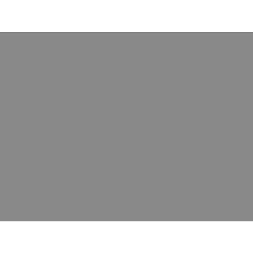 Icon Price
