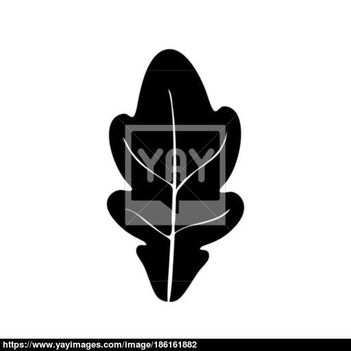 Oak Leaf Black Color Icon Vector