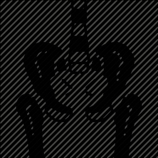 Bones, One, Pelvic, Snuffle Icon