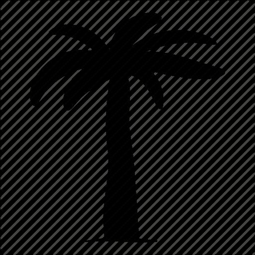 Nature, Palm, Tree Icon