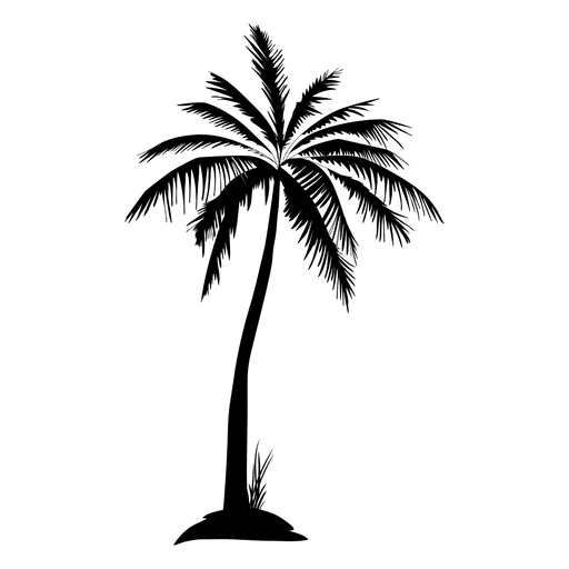 Black Isolated Palm Tree Silhouette