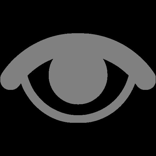 Gray Visible Icon
