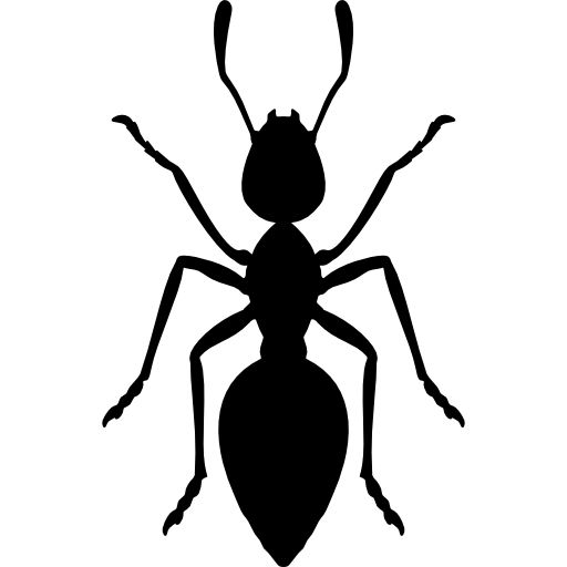 Ant Free Vector Icons Designed