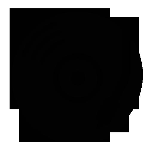 Picture Album Icon