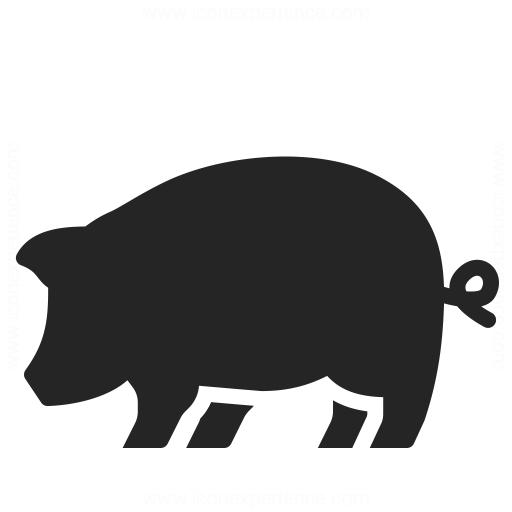 Pig Icon Iconexperience