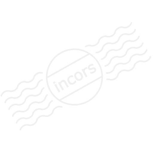 Iconexperience M Collection Pineapple Icon