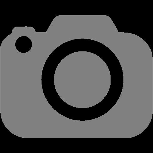 Gray Slr Camera Icon