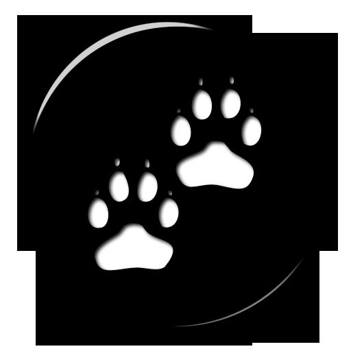 Dog Paw Prints Icon