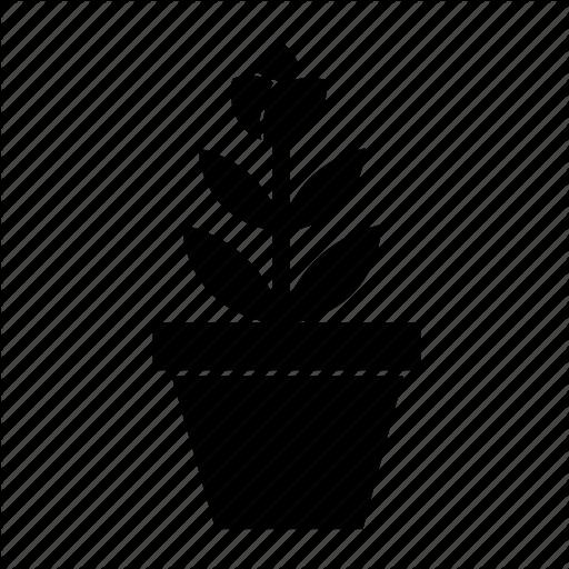 Flower Pot, Flowerpot, Nature, Plant, Planting Flower, Plants