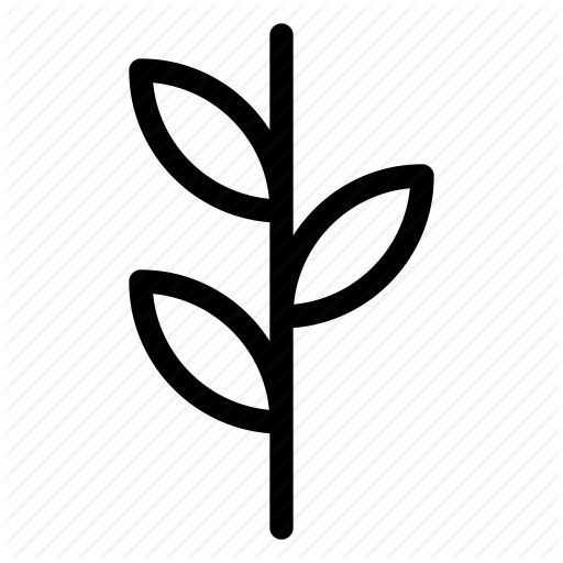Growing, Leaf, Plant, Seed Icon