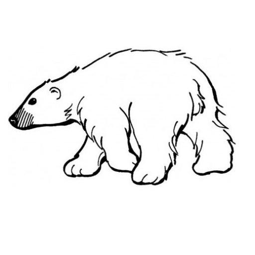 Polar Bear Diaries Pbd For Ppc