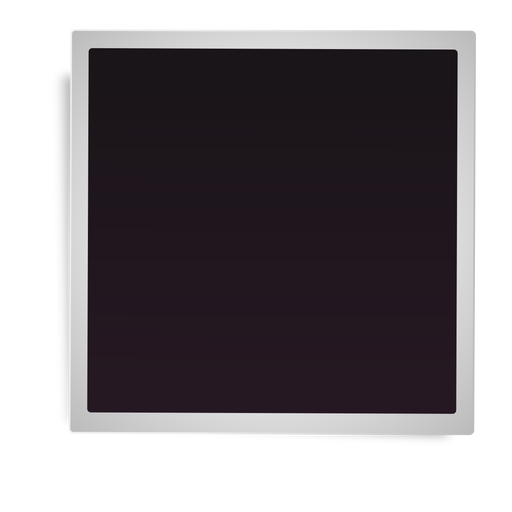 Simple Polaroid Frame Icon